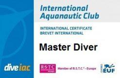 12 masterdiver
